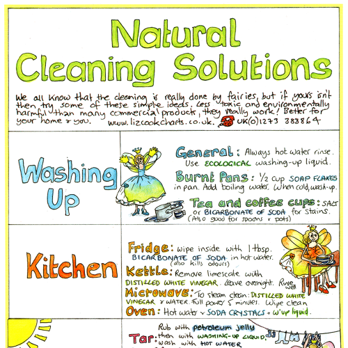 Natural Cleaning Solutions Chart