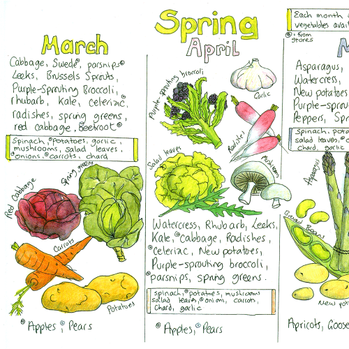 Seasonal UK Fruit and Vegetable Chart