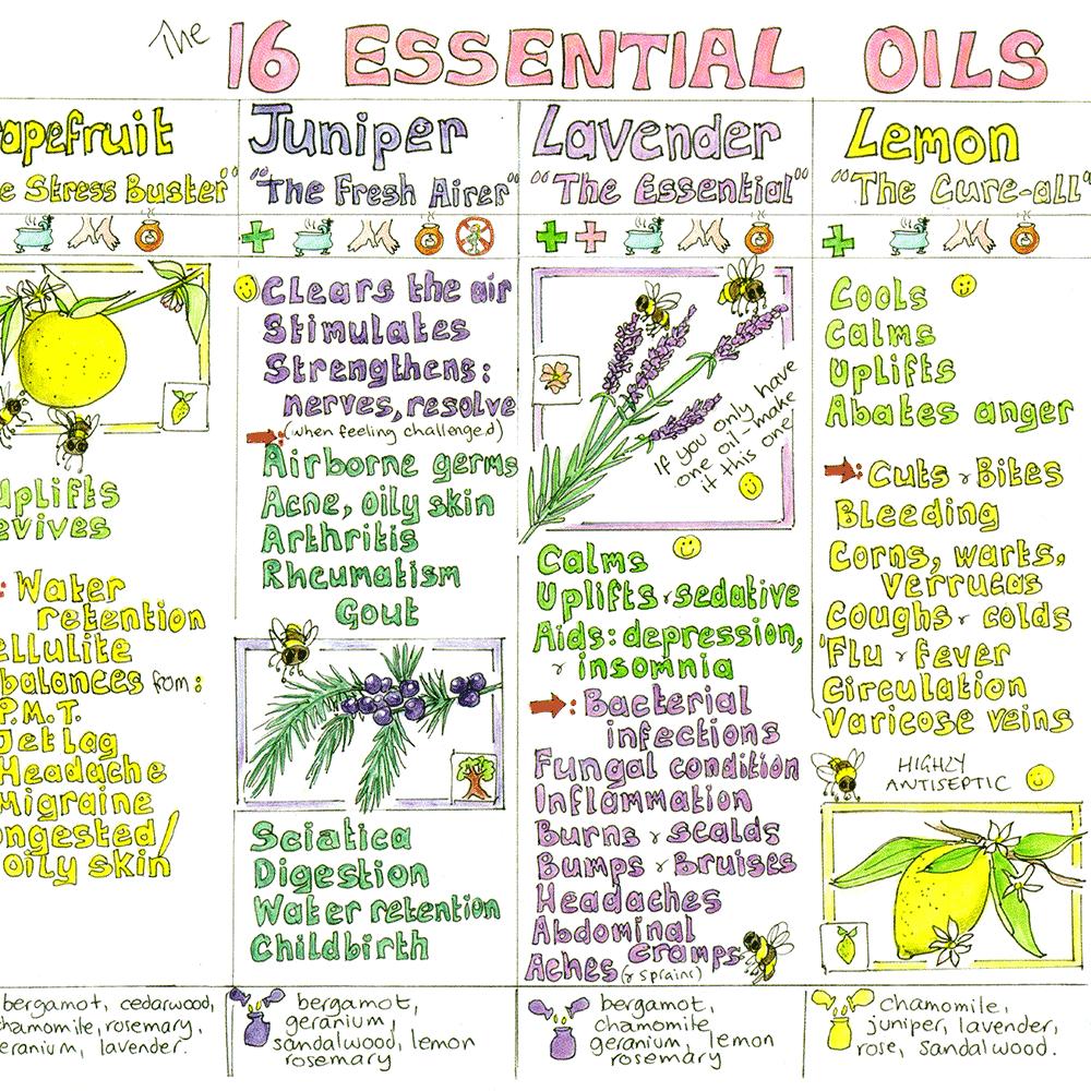 Essential Oils Chart - Liz Cook Charts